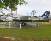 Intruder at Havelock, May 2012