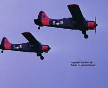 Beaver S-5 S-9 (formation) Twenthe 31-8-1974 J.A.Engels