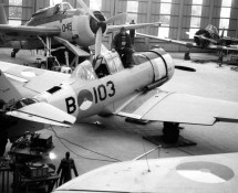 Harvard B-103 at the AFS in The Hague in 1975