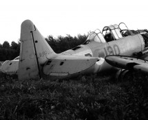 Harvard B-190