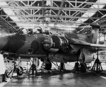 buccaneer-xw547-rafg-15sq-laarbruch-29-9-1973-j-a-engels