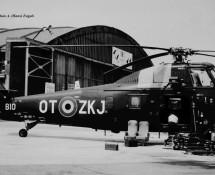 Sikorsky S-58 (HE)