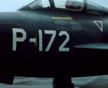 p-172-deeljpg
