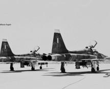 northrop-f-5a-10486-en-89058-griekse-lm-istrana-7-1973-coll-j-a-engels