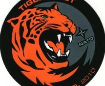 tiger-meet