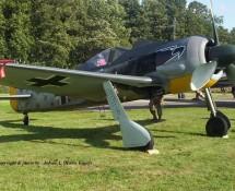 Focke Wulf FW-190 (29-8-2009) (HE)