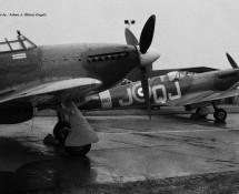 warbirdhawker-hurricane-lf363le-d-spitfire-ab910-jq-j-florennes-21-6-1975-j-a-engels