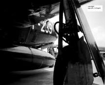 P-239 (CHE)