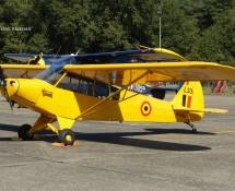 Piper L33