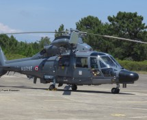 AS365 Dauphin 313 of French Navy Flottilje 30F at Hyeres (FK)