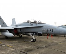 EF-18B Hornet 12-73/CE15-10 SpanishAF (FK)