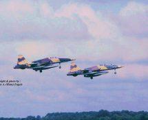 Northrop SRF-5 Spanish AF (HE)