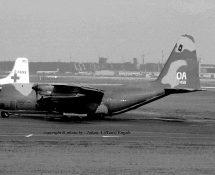 C-130 Hercules USAF (HE)