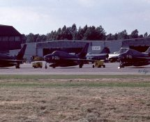 NEW: P-203 (Coll.GH)